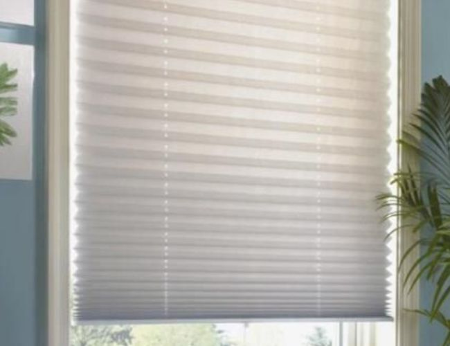 AOneBlinds_Tauranga_Waikato_Our_Blinds_Cellular.jpg
